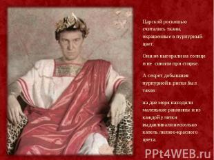Царской роскошью считались ткани, окрашенные в пурпурный цвет. Царской роскошью