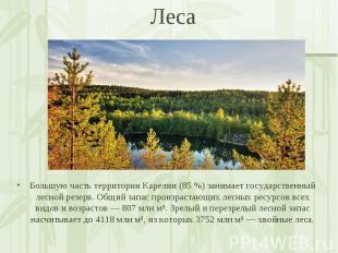 Большую часть территории Карелии (85 %) занимает государственный лесной резерв.