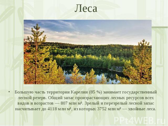 Большую часть территории Карелии (85 %) занимает государственный лесной резерв. Общий запас произрастающих лесных ресурсов всех видов и возрастов — 807 млн м³. Зрелый и перезрелый лесной запас насчитывает до 4118 млн м³, из которых 3752 млн м³ — хво…