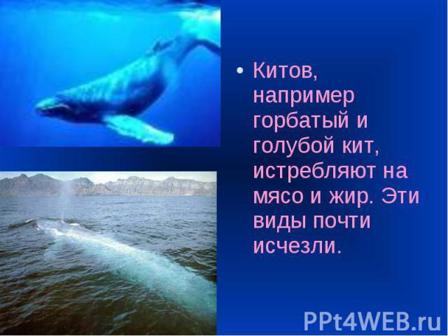 Китов, например горбатый и голубой кит, истребляют на мясо и жир. Эти виды почти исчезли. Китов, например горбатый и голубой кит, истребляют на мясо и жир. Эти виды почти исчезли.