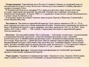 Распространение. Европейская часть России от Северного Кавказа до тундровой зоны