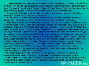 Распространение. Бассейны Баренцева, Белого, Балтийского, Черного, Каспийского и