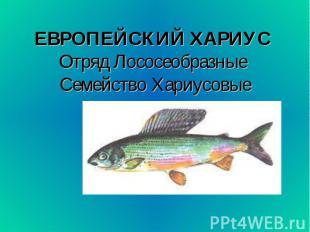 ЕВРОПЕЙСКИЙ ХАРИУС Отряд Лососеобразные Семейство Хариусовые