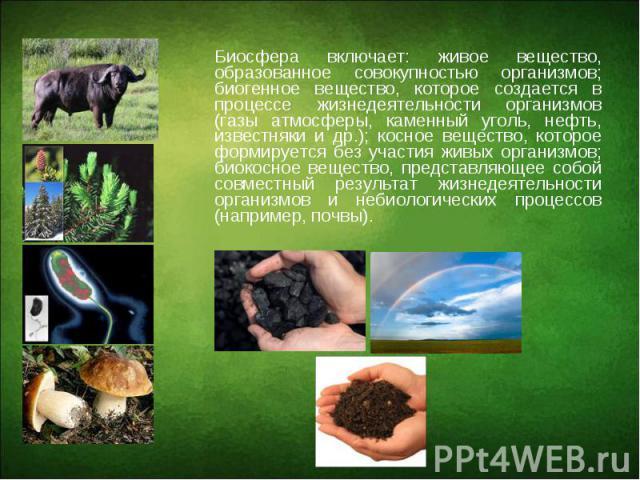 Биосфера включает: живое вещество, образованное совокупностью организмов; биогенное вещество, которое создается в процессе жизнедеятельности организмов (газы атмосферы, каменный уголь, нефть, известняки и др.); косное вещество, которое формируется б…