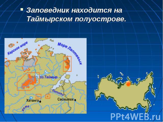 Заповедник находится на Таймырском полуострове. Заповедник находится на Таймырском полуострове.
