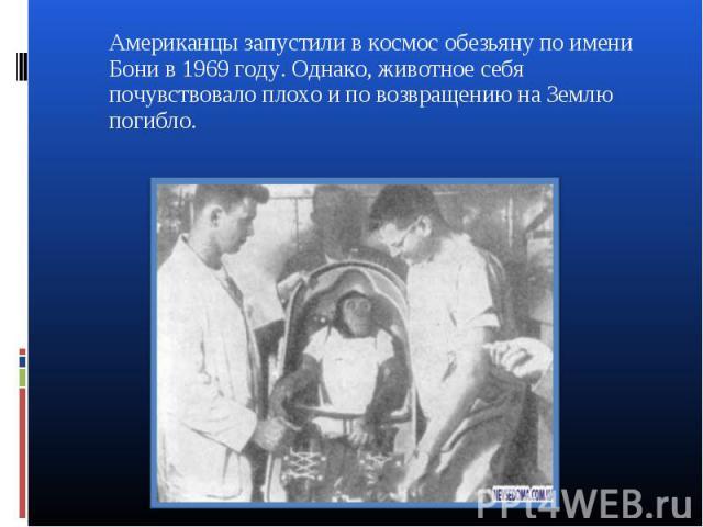 Американцы запустили в космос обезьяну по имени Бони в 1969 году. Однако, животное себя почувствовало плохо и по возвращению на Землю погибло. Американцы запустили в космос обезьяну по имени Бони в 1969 году. Однако, животное себя почувствовало плох…