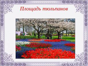 Площадь тюльпанов