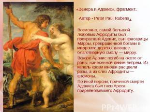 «Венера и Адонис», фрагмент. Автор - Peter Paul Rubens. Возможно, самой большой
