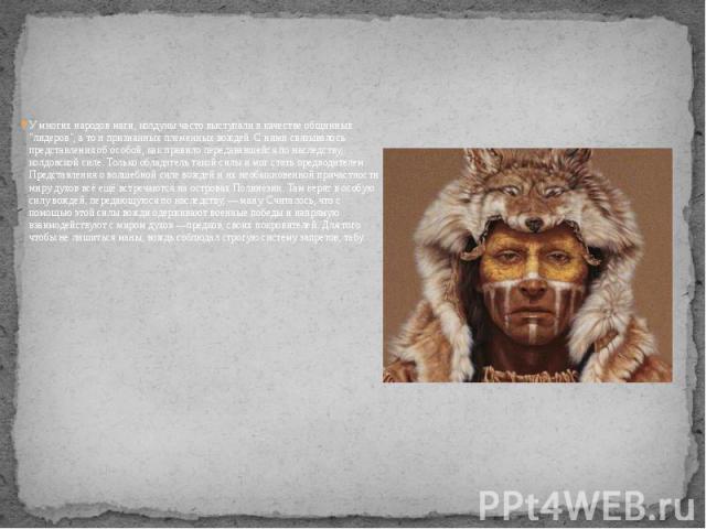 """У многих народов маги, колдуны часто выступали в качестве общинных """"лидеров"""", а то и признанных племенных вождей. С ними связывалось представления об особой, как правило передававшейся по наследству, колдовской силе. Только обладатель тако…"""