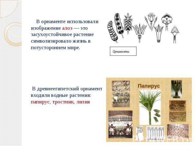 В орнаменте использовали изображение алоэ — это засухоустойчивое растение символизировало жизнь в потустороннем мире. В орнаменте использовали изображение алоэ — это засухоустойчивое растение символизировало жизнь в потустороннем мире. В древнеегипе…
