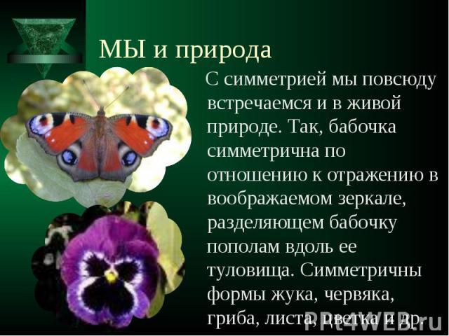 С симметрией мы повсюду встречаемся и в живой природе. Так, бабочка симметрична по отношению к отражению в воображаемом зеркале, разделяющем бабочку пополам вдоль ее туловища. Симметричны формы жука, червяка, гриба, листа, цветка и др. С симметрией …