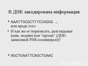 В ДНК закодирована информация AAATTGCGCTTTCCAGGG … или вроде того И как же ее пе