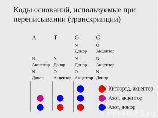 Коды оснований, используемые при переписывании (транскрипции)