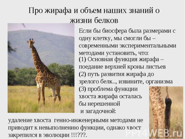 Про жирафа и объем наших знаний о жизни белков