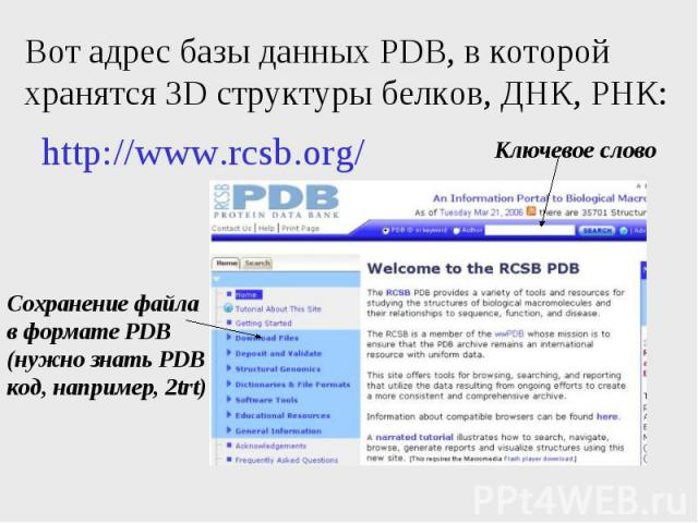 Вот адрес базы данных PDB, в которой хранятся 3D структуры белков, ДНК, РНК:
