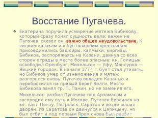 Екатерина поручила усмирение мятежа Бибикову, который сразу понял сущность дела;