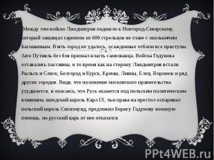 Между тем войско Лжедмитрия подошло к Новгород-Северскому, который защищал гарни