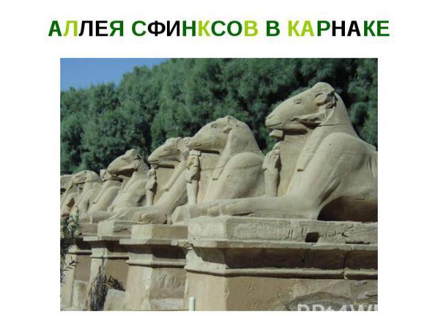 АЛЛЕЯ СФИНКСОВ В КАРНАКЕ