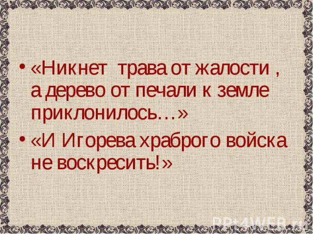 «Никнет трава от жалости , а дерево от печали к земле приклонилось…» «Никнет трава от жалости , а дерево от печали к земле приклонилось…» «И Игорева храброго войска не воскресить!»