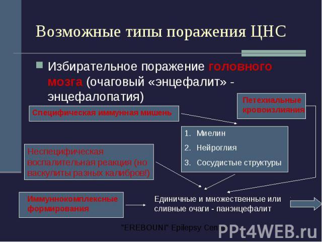 Возможные типы поражения ЦНС Избирательное поражение головного мозга (очаговый «энцефалит» - энцефалопатия)
