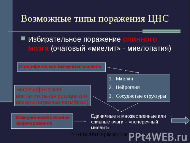 Возможные типы поражения ЦНС Избирательное поражение спинного мозга (очаговый «миелит» - миелопатия)