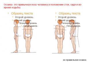 Осанка- это привычная поза человека в положении стоя, сидя и во время ходьбы. пр
