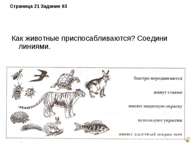 Как животные приспосабливаются? Соедини линиями. Как животные приспосабливаются? Соедини линиями.