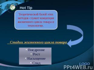Hot Tip Стадии жизненного цикла товара
