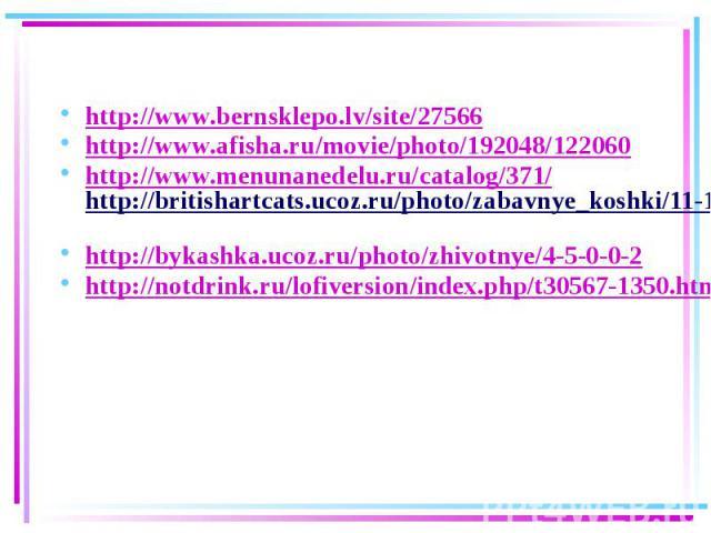 http://www.bernsklepo.lv/site/27566 http://www.afisha.ru/movie/photo/192048/122060 http://www.menunanedelu.ru/catalog/371/http://britishartcats.ucoz.ru/photo/zabavnye_koshki/11-1-0-0-2 http://bykashka.ucoz.ru/photo/zhivotnye/4-5-0-0-2 http://notdrin…