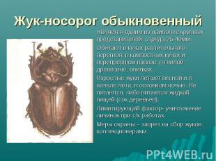 Является одним из наиболее крупных представителей отряда 25-40мм. Является одним