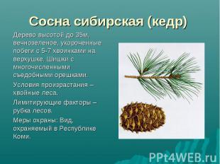Растения красной книги  ozonitru