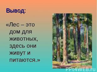 Вывод: «Лес – это дом для животных, здесь они живут и питаются.»