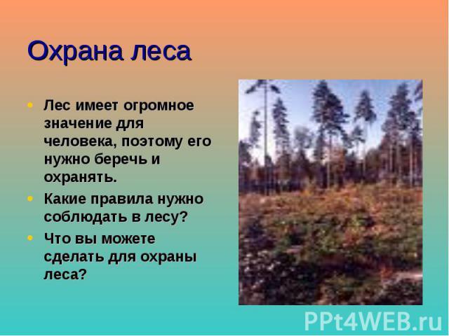 Охрана леса Лес имеет огромное значение для человека, поэтому его нужно беречь и охранять. Какие правила нужно соблюдать в лесу? Что вы можете сделать для охраны леса?