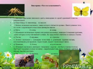 Викторина «Что это за насекомое?». 1. Бабочка с крыльями лимонного цвета, имеющи