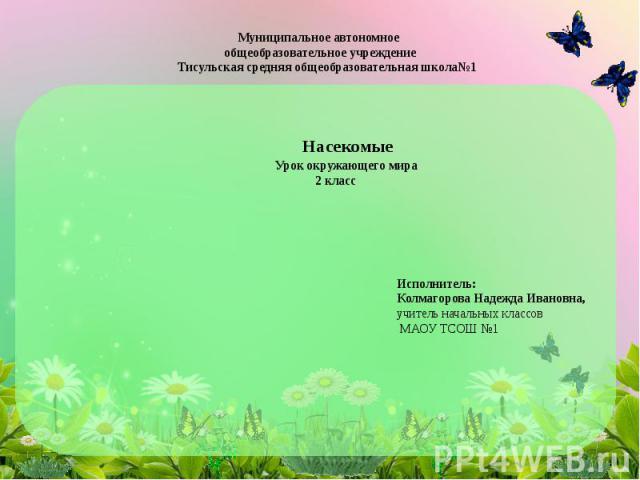 Муниципальное автономное общеобразовательное учреждение Тисульская средняя общеобразовательная школа№1