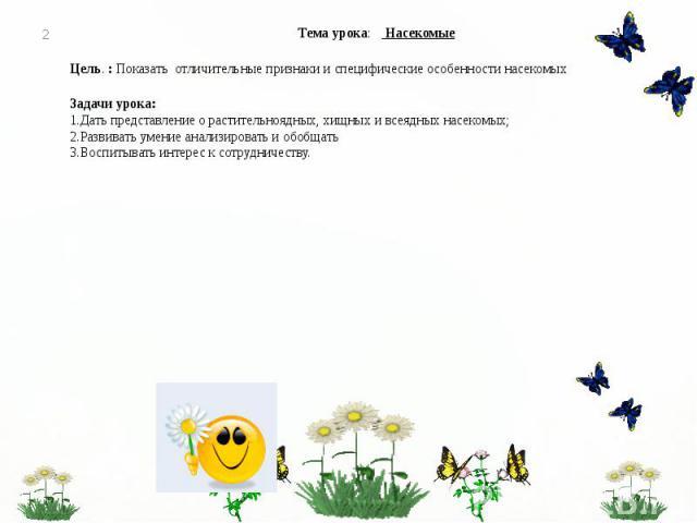 Урок окружающего мира 2 класс (Перспективная начальная школа) Тема урока: Насекомые Цель. : Показать отличительные признаки и специфические особенности насекомых Задачи урока: 1.Дать представление о растительноядных, хищных и всеядных насекомых; 2.Р…