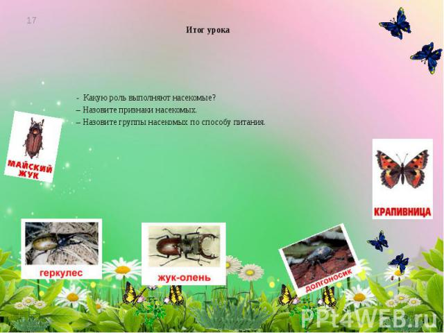 Итог урока - Какую роль выполняют насекомые? – Назовите признаки насекомых. – Назовите группы насекомых по способу питания.