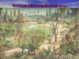 Флора Мезозойской эры