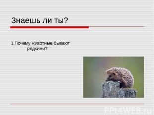 Знаешь ли ты? 1.Почему животные бывают редкими?