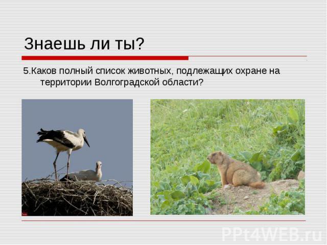 Знаешь ли ты? 5.Каков полный список животных, подлежащих охране на территории Волгоградской области?