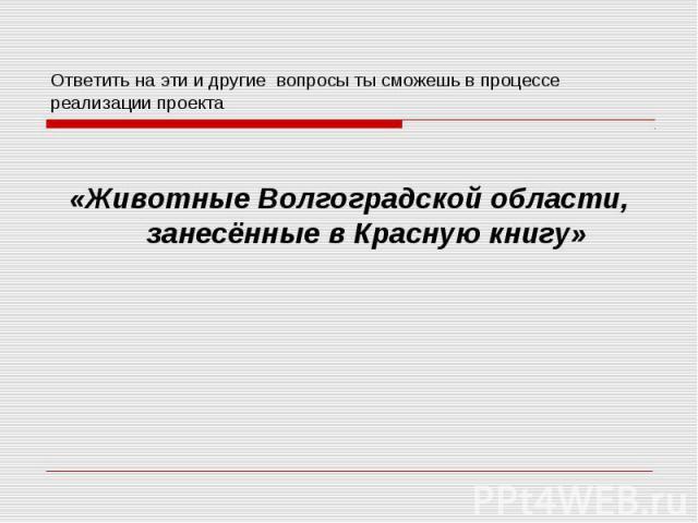 Ответить на эти и другие вопросы ты сможешь в процессе реализации проекта «Животные Волгоградской области, занесённые в Красную книгу»