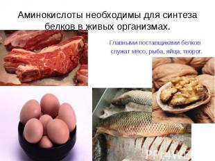 Главными поставщиками белков Главными поставщиками белков служат мясо, рыба, яйц