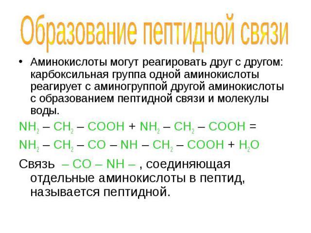 Аминокислоты могут реагировать друг с другом: карбоксильная группа одной аминокислоты реагирует с аминогруппой другой аминокислоты с образованием пептидной связи и молекулы воды. Аминокислоты могут реагировать друг с другом: карбоксильная группа одн…