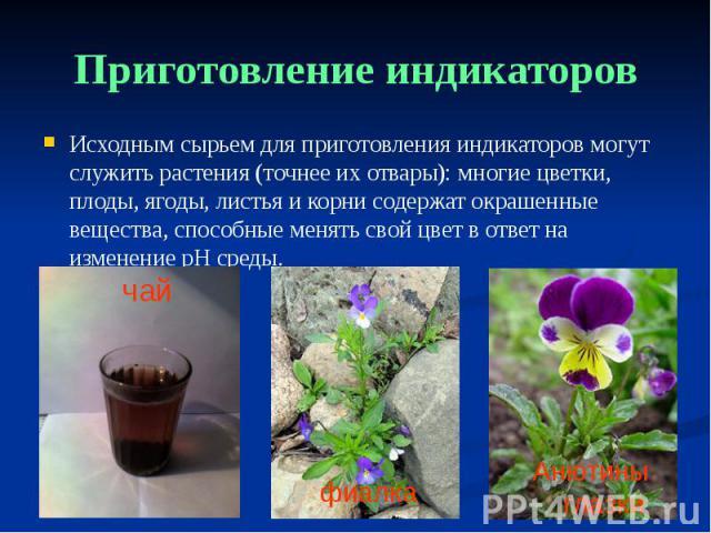 Приготовление индикаторов Исходным сырьем для приготовления индикаторов могут служить растения (точнее их отвары): многие цветки, плоды, ягоды, листья и корни содержат окрашенные вещества, способные менять свой цвет в ответ на изменение pH среды.