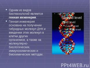 Одним из видов биотехнологий является генная инженерия. Одним из видов биотехнол