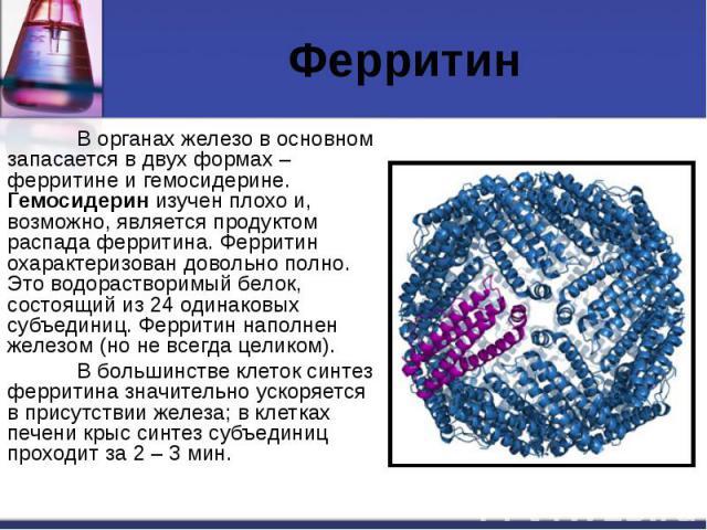 Ферритин В органах железо в основном запасается в двух формах – ферритине и гемосидерине. Гемосидерин изучен плохо и, возможно, является продуктом распада ферритина. Ферритин охарактеризован довольно полно. Это водорастворимый белок, состоящий из 24…