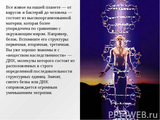 Все живое на нашей планете — от вирусов и бактерий до человека — состоит из высокоорганизованной материи, которая более упорядочена по сравнению с окружающим миром. Например, белок. Вспомните его структуры: первичная, вторичная, третичная. Вы уже хо…
