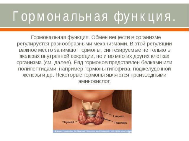 Гормональная функция. Гормональная функция. Обмен веществ в организме регулируется разнообразными механизмами. В этой регуляции важное место занимают гормоны, синтезируемые не только в железах внутренней секреции, но и во многих других клетках орган…