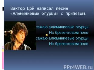 Виктор Цой написал песню «Алюминиевые огурцы» с припевом: Я сажаю алюминиевые ог