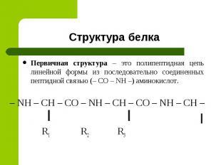 Первичная структура – это полипептидная цепь линейной формы из последовательно с
